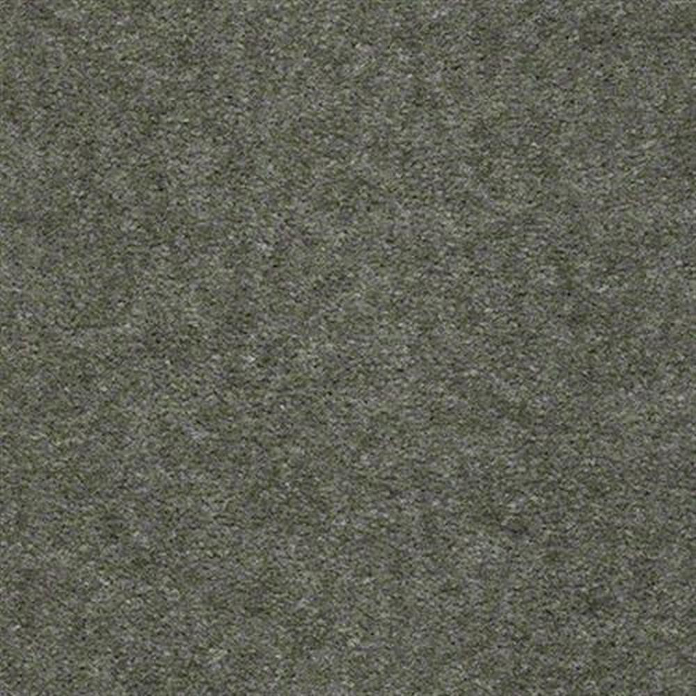 Aspen Classic 12 Ft. 100% Continuous Filament FHA Nylon 25 Oz. Carpet - Boston Fern